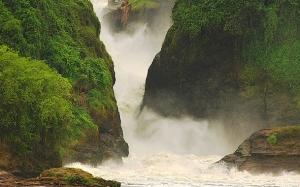 murchison falls safari in uganda