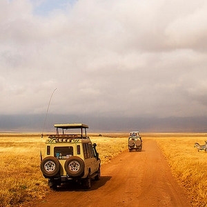 ngorongoro game drive