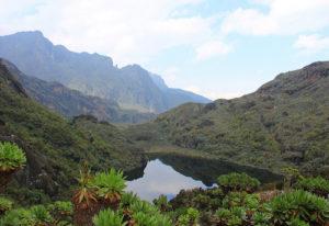 Rwenzori Mountains National Park Uganda