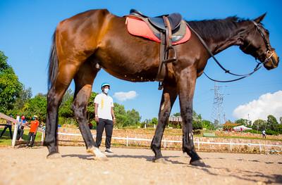 Rwanda horse riding