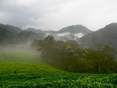 rwanda agritourism