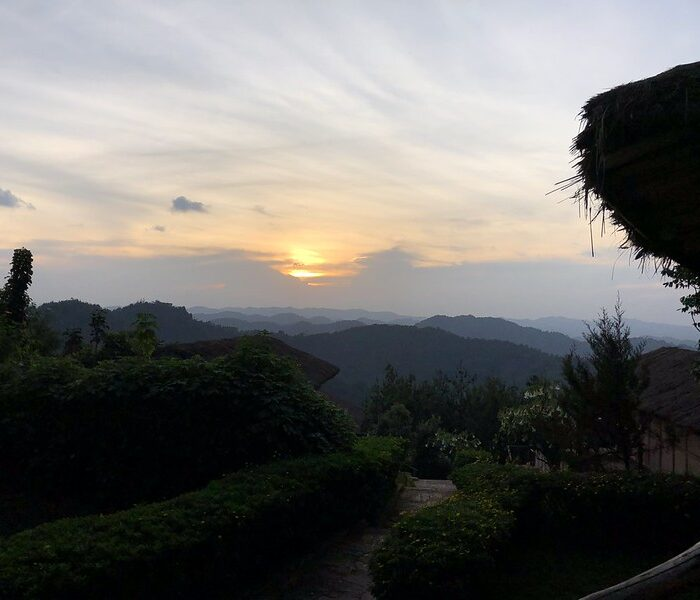 Gorilla Watching in Rwanda and Uganda