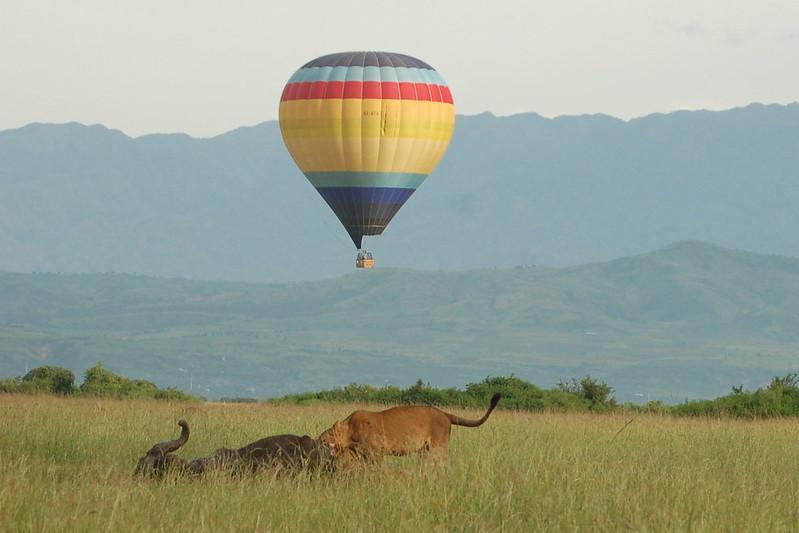 Baloon safari in Uganda